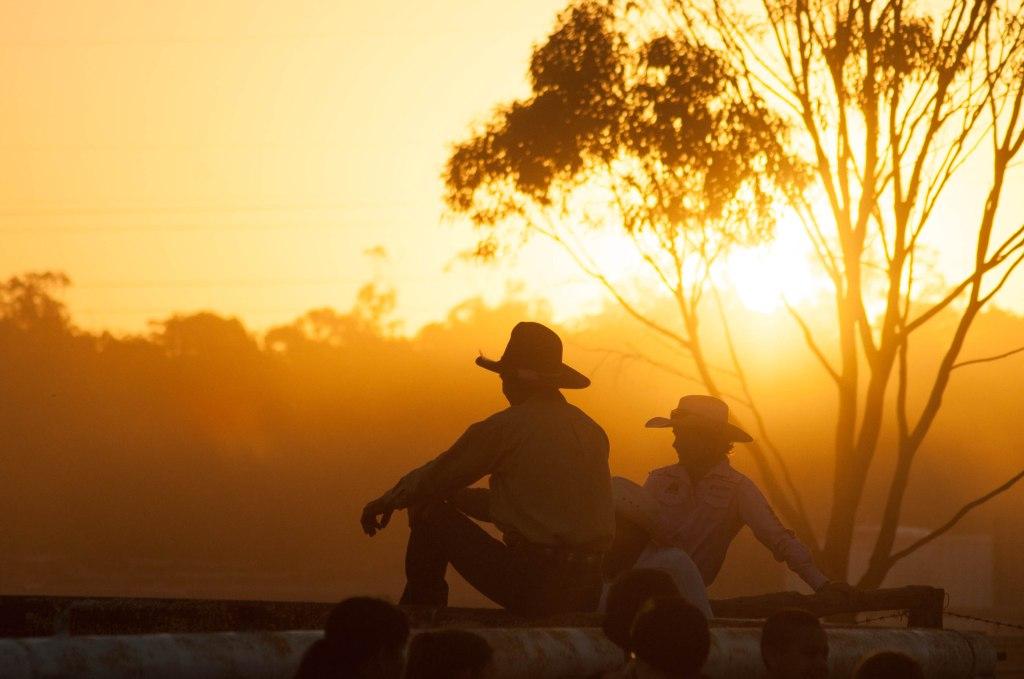 KAteOram-05-2015-campdraft sunset-