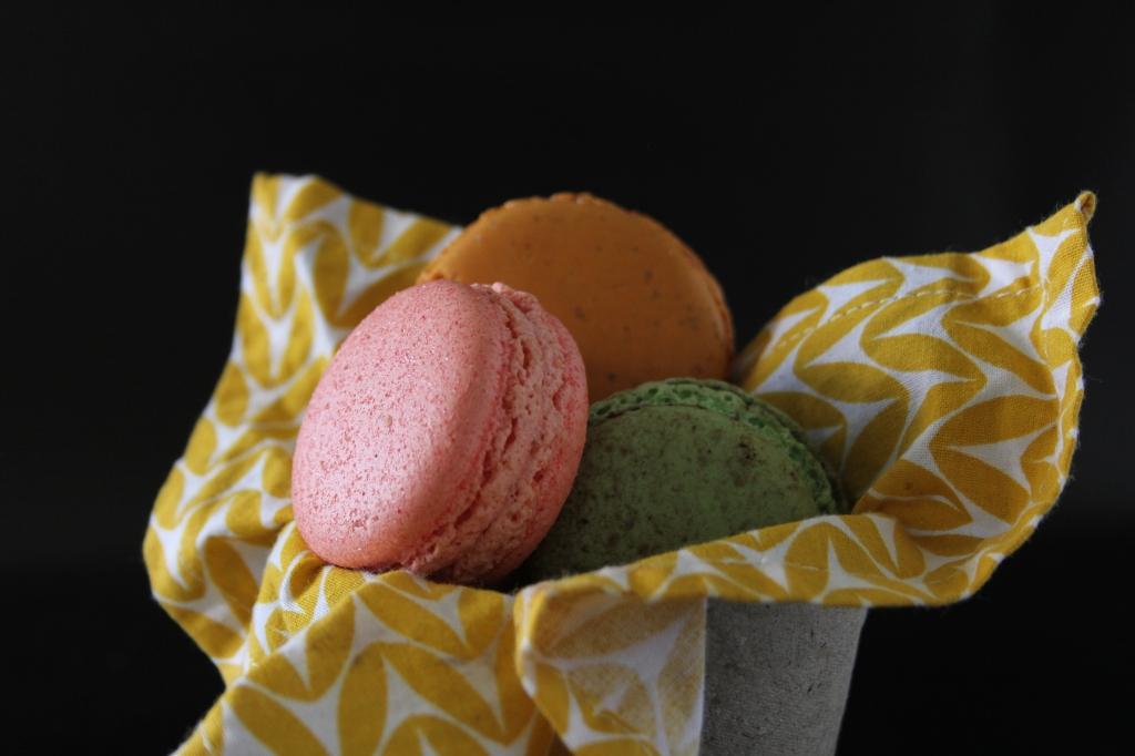 allisonwest-July2015-macarons