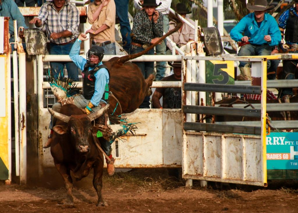 11_stuartdolbel_rodeo