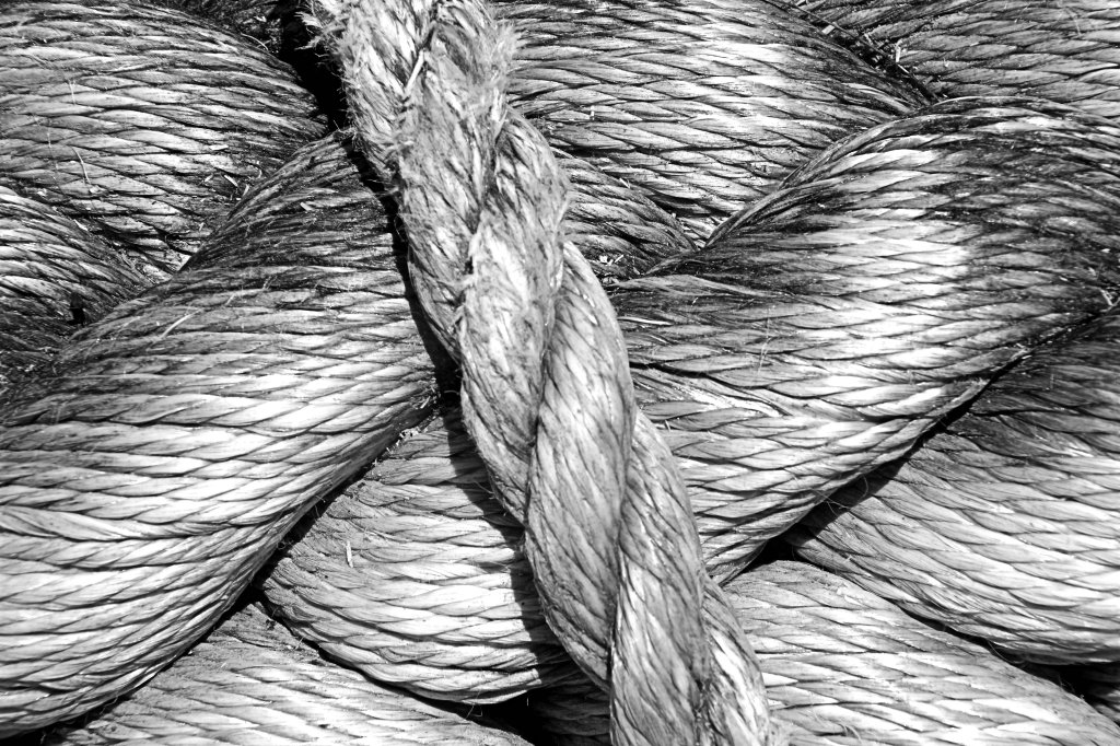 pattimmins_sept16_twisted-rope